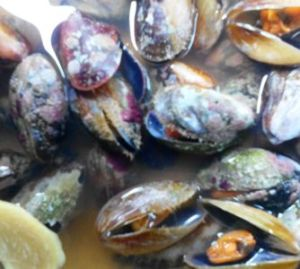 Daligdig in soup base dish, the best for mussel.