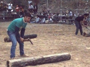 The contestants are busy with their axes in wood chopping contest.
